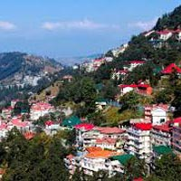 Beauty of Shimla Tour