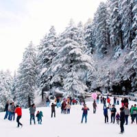 Shimla - Kufri Tour