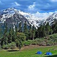 Trek To Jalori Pass(Kullu-Himachal Pradesh) Tour