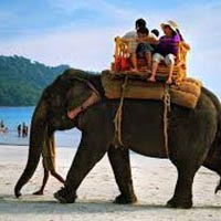 Awesome Andaman Package