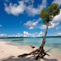 Truly Andaman Tour