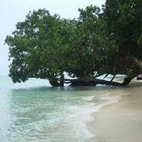 Best of Havelock and Port Blair