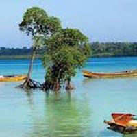 Beautiful Andaman: 3 Nights 4 Days Tour