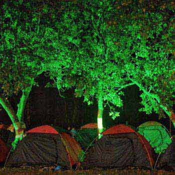 Green Wood Jungle Camp 2Day 1 Night Package
