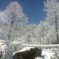 lachen valley, north sikkim