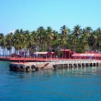 Andaman Package for 5 Nights and 6 Days ( Coral Package)