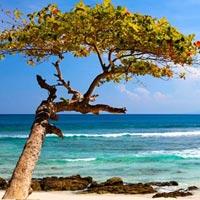 Quick Glance Of Andaman Tour