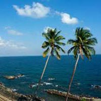Glimpse of the Middle Andaman Tour