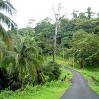 Andaman view Tour