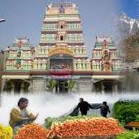 Bangalore - Mysore - Ooty - Kodaikanal - Rameshwar - Kanyakumari (9 Days / 8 Nights)