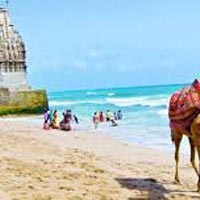Divinity of Gujarat Tour