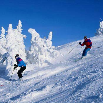Kullu-Manali-Shimla 6 Days / 5 Nights Tour