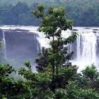 Athirapilly Waterfalls - Alleppey Houseboat Tour