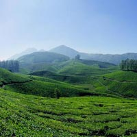 Green Kerala Tour