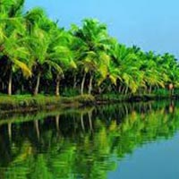Kerela 5 Nights 6 Days Tour