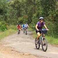 Cycling Tour in  Kerala