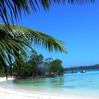 Andaman Havelock Island Tour
