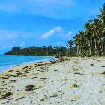 Enjoyable Andaman Trip Tour