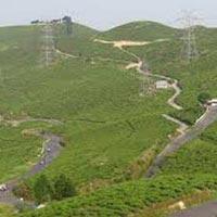 Group Tours / Darjeeling - Gangtok - Pelling - Lachung