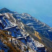 Group Tours / Darjeeling - Gangtok - Pelling - Lachung