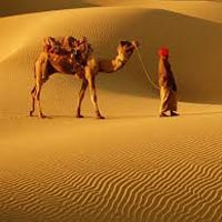 Shining Rajasthan Tour