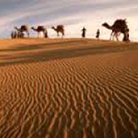 Desert Beach Tour of Gujarat