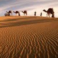 Desert Beach Tour of Gujarat
