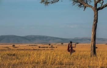 3 Days Azure Masai Mara Road Safari Tour
