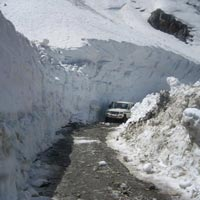 Splendour Of Himachal Tour
