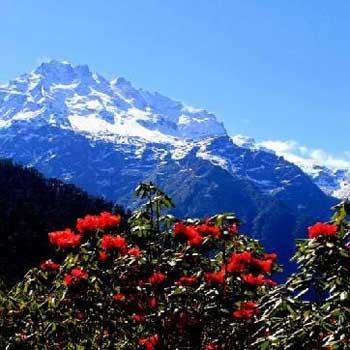 Mesmerizing Himalaya Tour