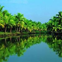 backwater at kerala