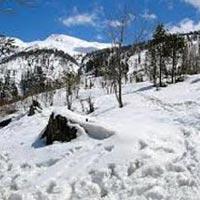 Shimla Short Escape Package