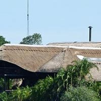 Mukambi Safari Lodge - Kafue