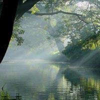 Kerala - Incredible [Cochin - Munnar - Thekkady - Alleppey - Kovalam - Kanyakumari] Tour