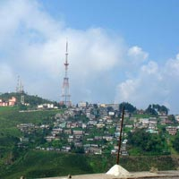 Darjeeling - Kurseong Tour Package