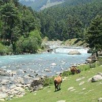 Kashmir Calling Package