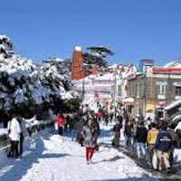 Shimla - Kufri - Chail Tour