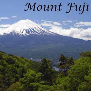 Sakura + Alpine Route Japan Tour
