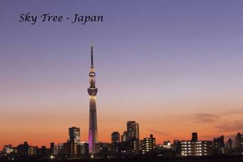 Cherry blossom special - Japan