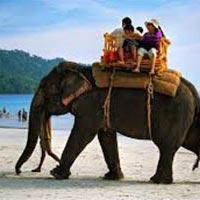 7N/8D Andaman Tour