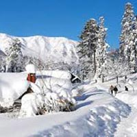 Gulmarg Tour Package
