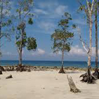 Exotic Andaman 6 Days Tour Package