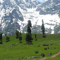 Magical Kashmir with Sonamarg Tour