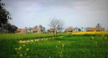 Amritsar Village Tour