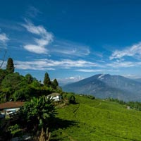 North East Delight with Pelling (Honeymoon Special)