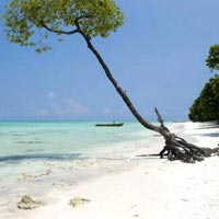 Eternal Andaman Tour