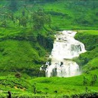 Sri Lankan Voyage Tour