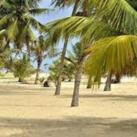 Best of Kerala with CGH Group of Hotels 8D/7N