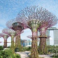Singapore Family Special Tour