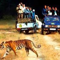Delhi - Nainital - Ranikhet tour